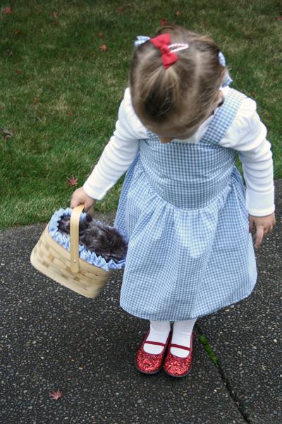 Dorothy 7