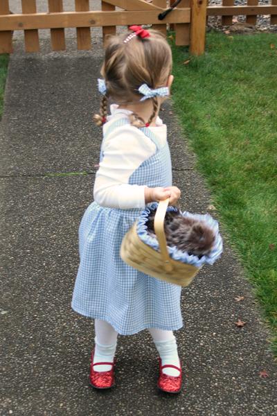 Dorothy 8