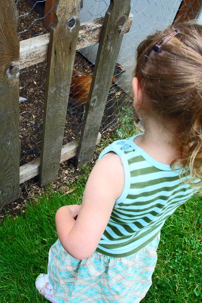 Goodbye chickens